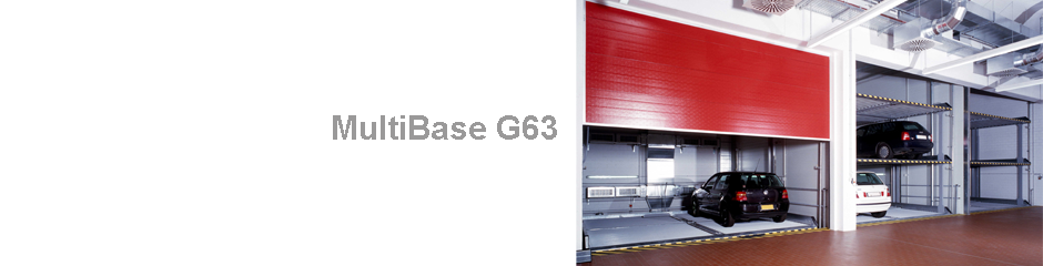 MultiBaseG63