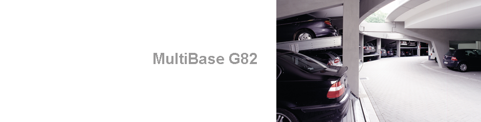 MultiBaseG82